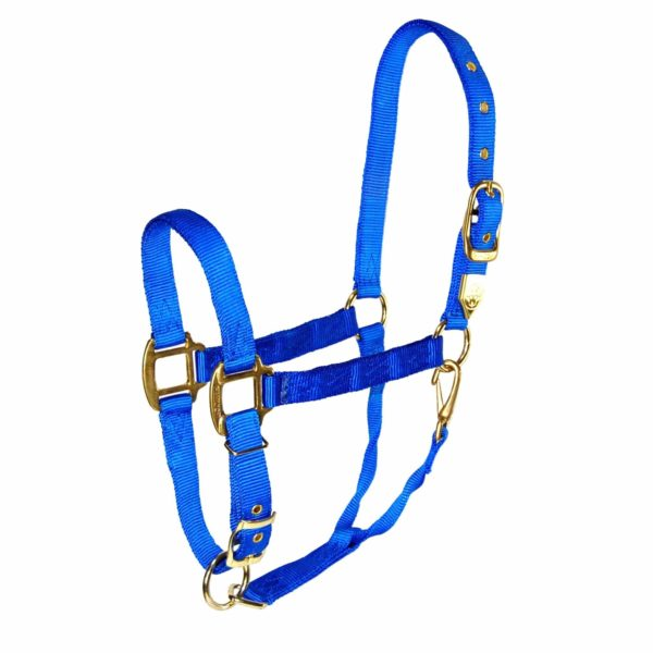 "1"" Deluxe Nylon Halters With Adjustable Chin & Snap - Halter - Hamilton - Miracle Corp"