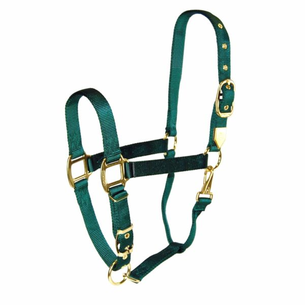 """1"""" Draft Deluxe Nylon Halters with Adjustable Chin Strap - Halter - Hamilton - Miracle Corp"""