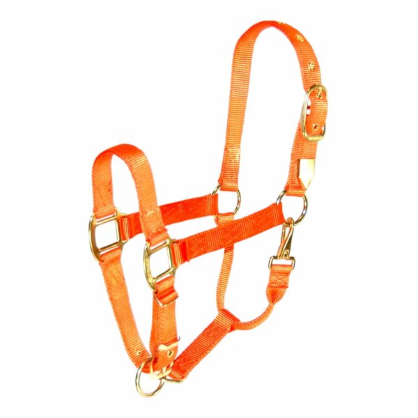 """1"""" Deluxe Nylon Halters With Adjustable Chin & Snap - Halter - Hamilton - Miracle Corp"""