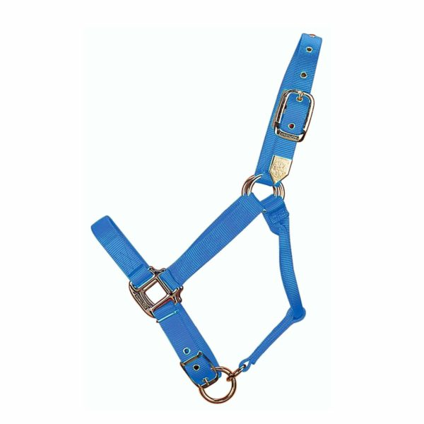 """1"""" Deluxe Nylon Halters with Adjustable Chin Strap - Halter - Hamilton - Miracle Corp"""