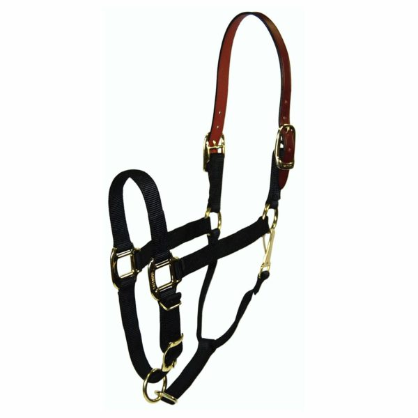 1‰ Quality Nylon Break-Away Halter with Leather Head Poll, Adjustable Chin & Snap - Halter - Hamilton - Miracle Corp