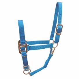1‰ Quality Nylon Halters with Adjustable Chin Strap & Snap - Halter - Hamilton - Miracle Corp