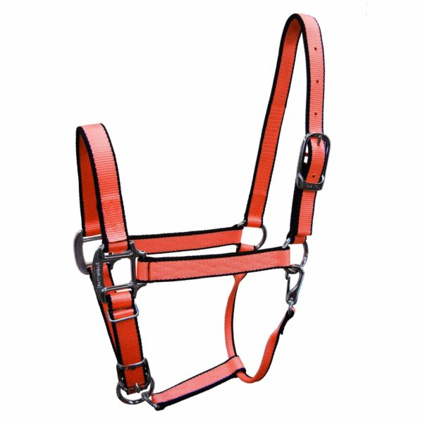 "1"" Quality Nylon Halters with Adjustable Chin Strap & Snap - Halter - Hamilton - Miracle Corp"