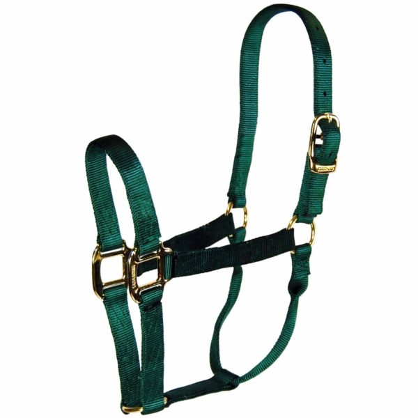 1‰۝ Quality Halter with Brass Hardware - Halter - Hamilton - Miracle Corp