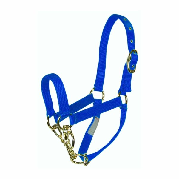 Control Halter with Chain - Halter - Hamilton - Miracle Corp