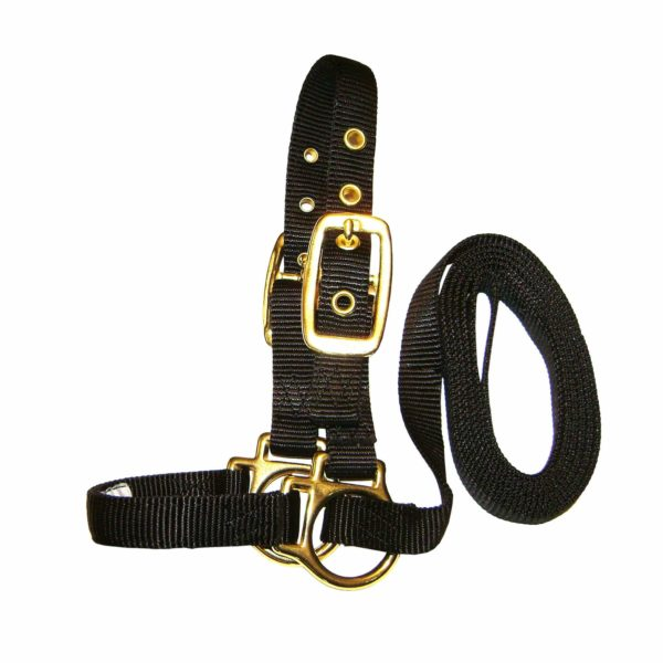 Deluxe Show Halter with Lead - Halter - Hamilton - Miracle Corp