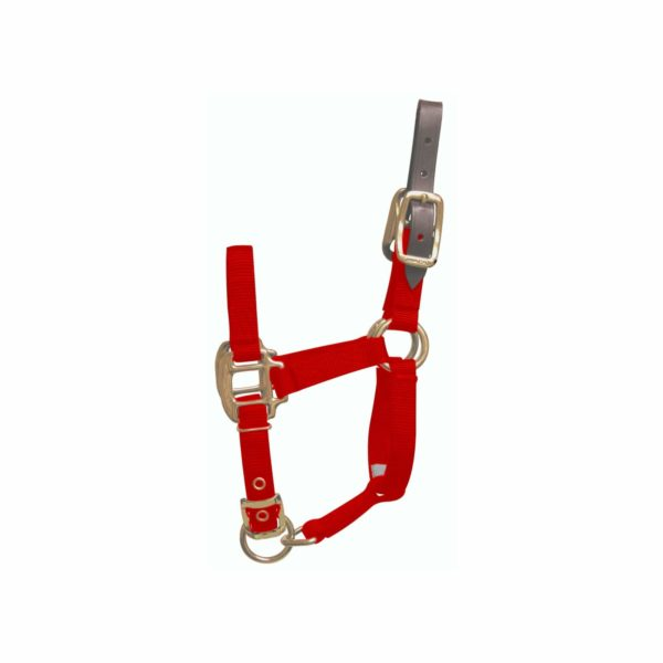 "3/4"" Deluxe Nylon Break-Away Halters with Leather Head Poll & Adjustable Chin - Halter - Hamilton - Miracle Corp"