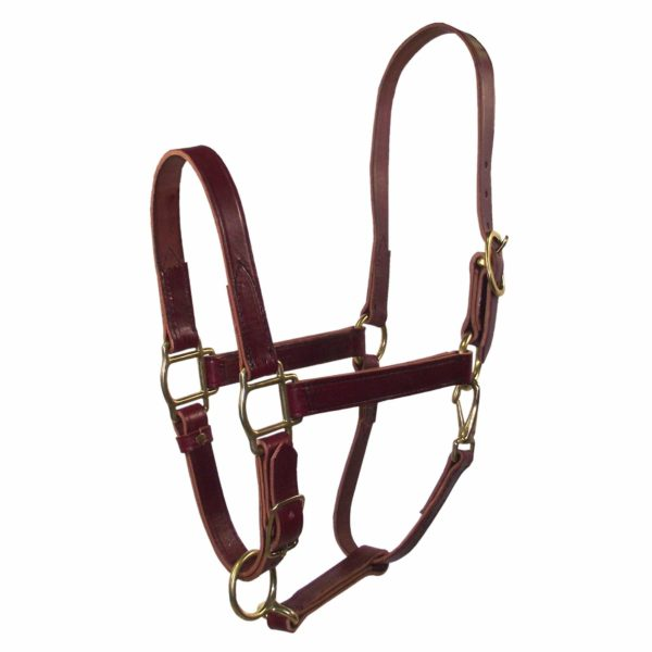 """3/4"""" Quality Leather Halters with Adjustable Chin & Snap - Halter - Hamilton - Miracle Corp"""