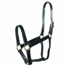 "3/4"" Quality Leather Halters - Halter - Hamilton - Miracle Corp"