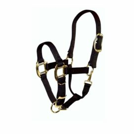 """3/4"""" Quality Nylon Halters with Adjustable Chin Strap & Snap - Halter - Hamilton - Miracle Corp"""