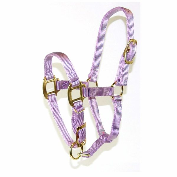 """3/4"""" Quality Nylon Halters with Adjustable Chin Strap - Halter - Hamilton - Miracle Corp"""
