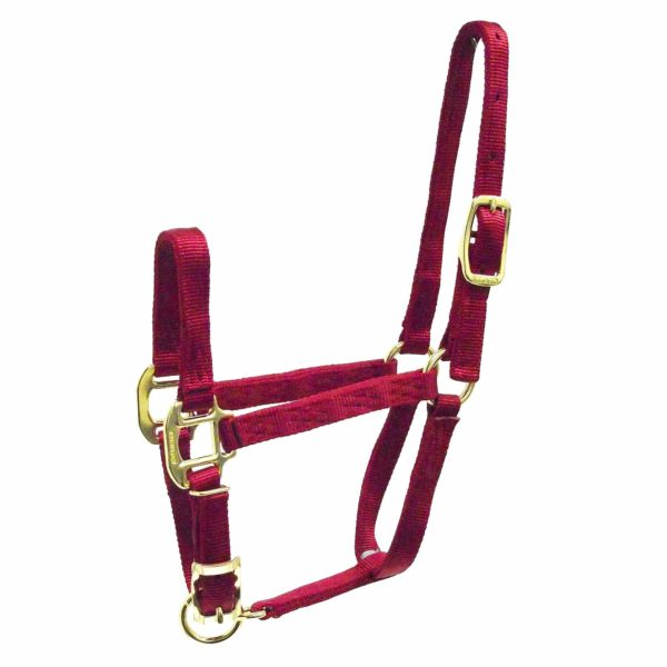"3/4"" Quality Nylon Halters with Adjustable Chin Strap - Halter - Hamilton - Miracle Corp"