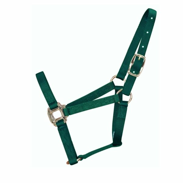 """3/4"""" Quality Halter with Brass Hardware - Halter - Hamilton - Miracle Corp"""