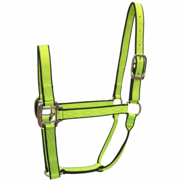 "3/4"" Quality Neon Nylon Halters - Halter - Hamilton - Miracle Corp"