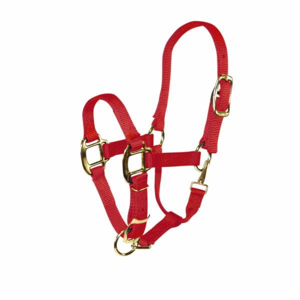 "3/4"" Quality Nylon Halters with Adjustable Chin Strap & Snap - Halter - Hamilton - Miracle Corp"