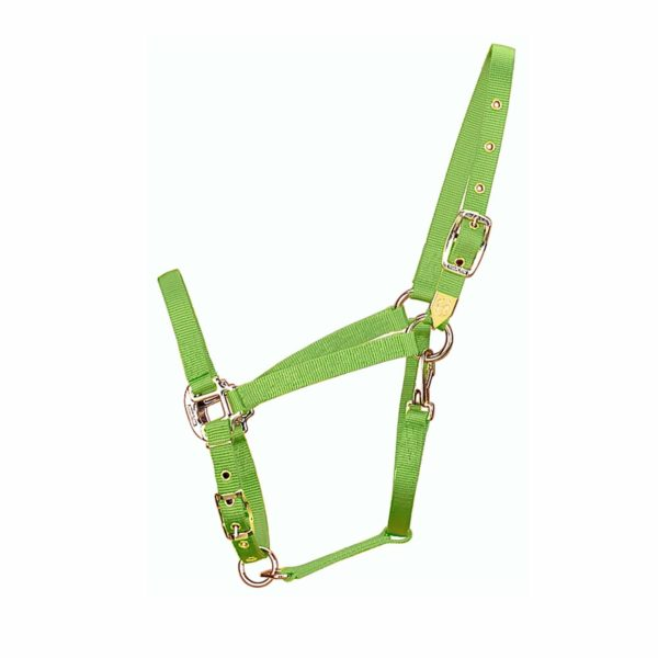 "3/4"" Arabian Deluxe Nylon Halters with Adjustable Chin Strap & Snap - Halter - Hamilton - Miracle Corp"