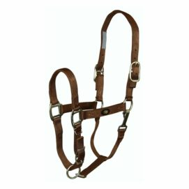 "1"" Deluxe Nylon Halters With Adjustable Chin Strap & Snap with Brushed Metal Hardware - Halter - Hamilton - Miracle Corp"