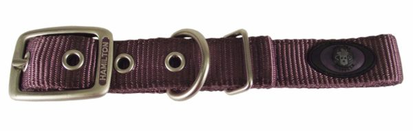 Designer Double Thick Buckle Collar with Brushed Nickel Finish - Collar - Hamilton - Miracle Corp