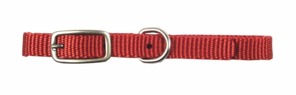 Designer Single Thick Buckle Collar with Brushed Nickel Finish - Collar - Hamilton - Miracle Corp