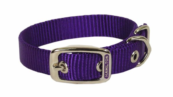 Classic Single Thick Buckle Collars, Large - Collar - Hamilton - Miracle Corp