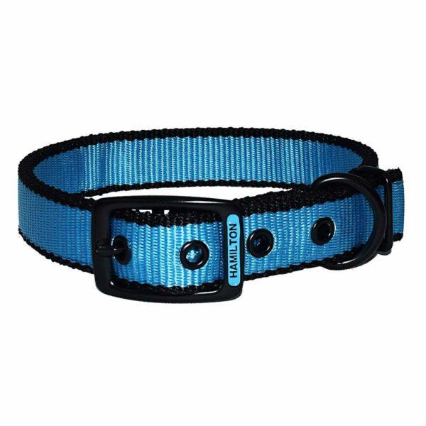 Neon Buckle Collar - Collar - Hamilton - Miracle Corp