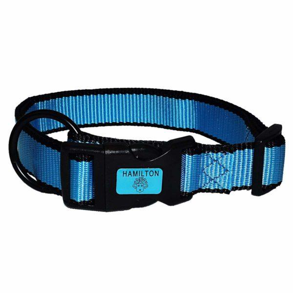 Neon Adjustable Collar - Collar - Hamilton - Miracle Corp