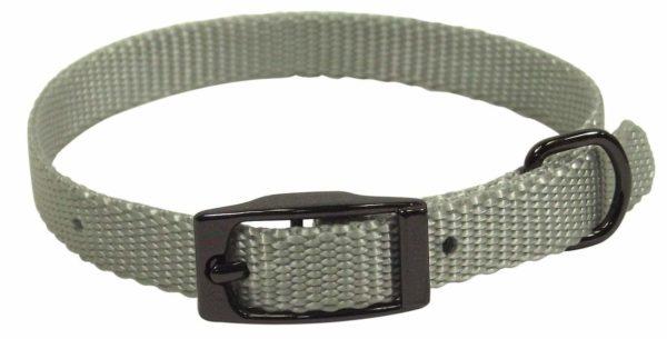 Designer Single Thick Buckle Collar with Gunmetal Finish - Collar - Hamilton - Miracle Corp