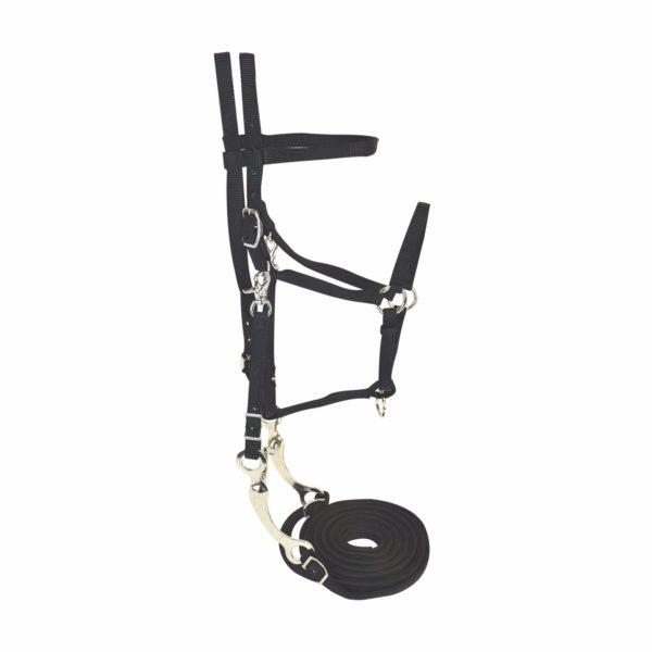 Bridle Set with Headstall, Split Reins, Bit & Curb Strap - Bridle - Hamilton - Miracle Corp