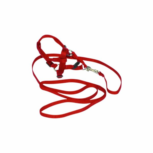 Harness with 4' Lead - Harness - Hamilton - Miracle Corp