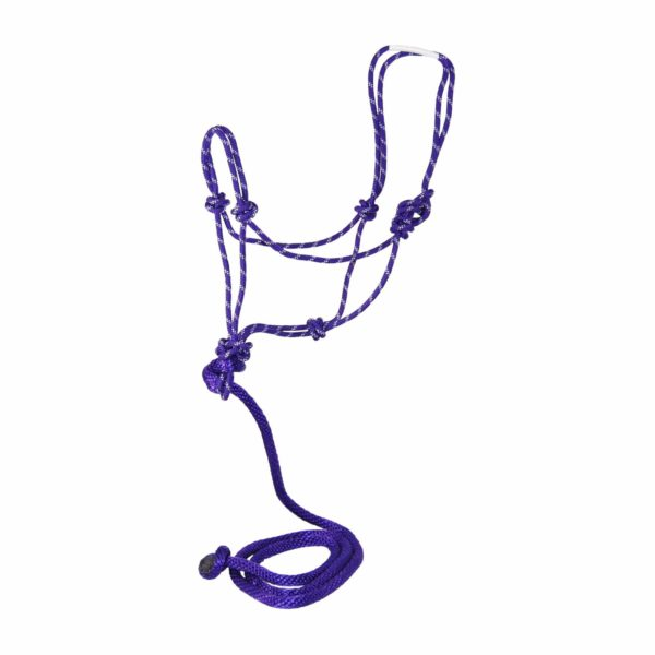 Average Rope Halters with 7' Lead, Multi-Color - Halter - Hamilton - Miracle Corp