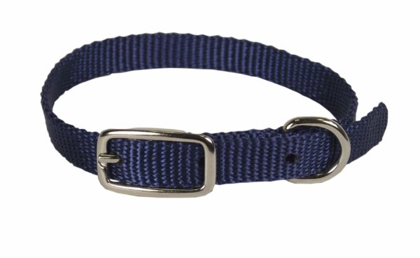 Classic Single Thick Buckle Collars, Extra Small - Collar - Hamilton - Miracle Corp