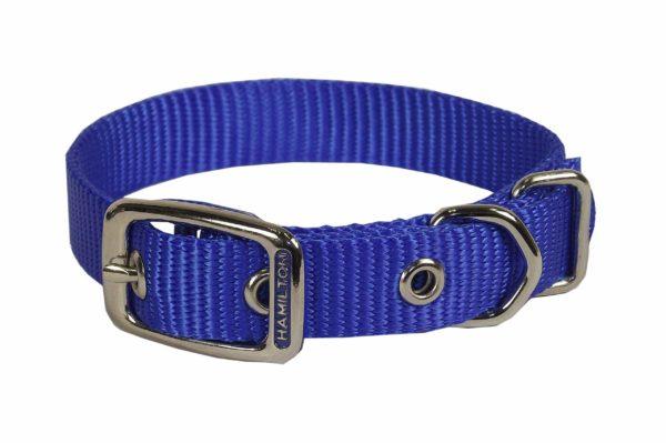 Classic Single Thick Buckle Collars, Medium - Collar - Hamilton - Miracle Corp