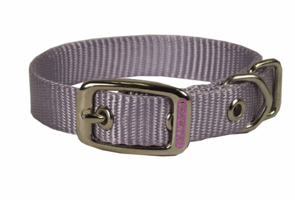 Classic Single Thick Buckle Collars, Small - Collar - Hamilton - Miracle Corp