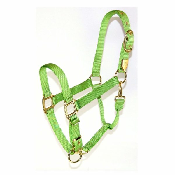 "3/4"" Deluxe Nylon Halters With Adjustable Chin & Snap - Halter - Hamilton - Miracle Corp"